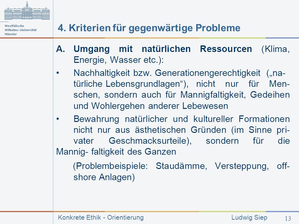 4. Kriterien für gegenwärtige Probleme