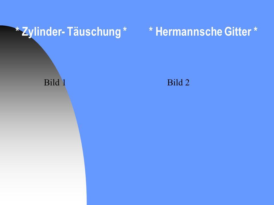 * Zylinder- Täuschung * * Hermannsche Gitter *