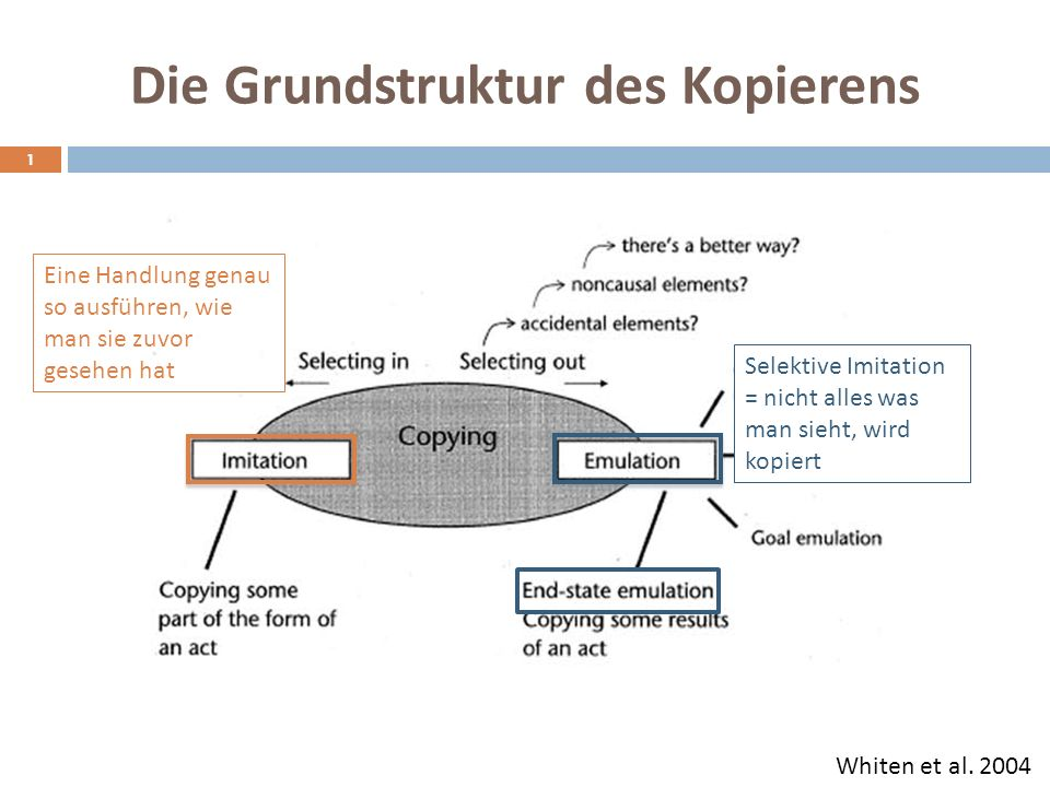 Die Grundstruktur des Kopierens