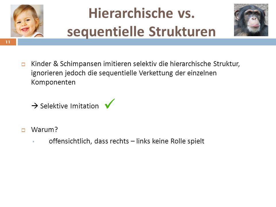 Hierarchische vs. sequentielle Strukturen