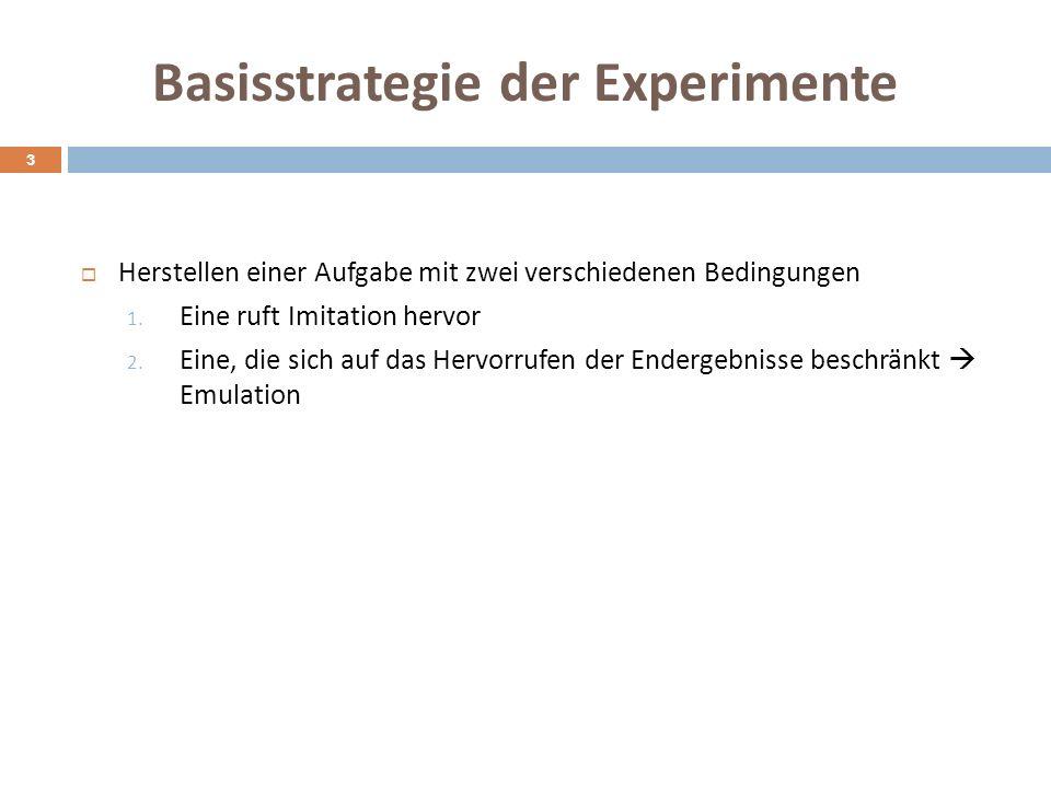 Basisstrategie der Experimente