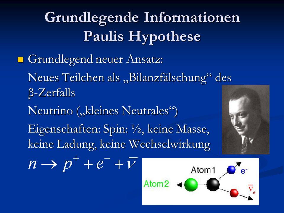Grundlegende Informationen Paulis Hypothese