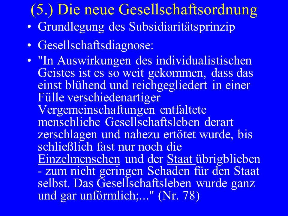 (5.) Die neue Gesellschaftsordnung