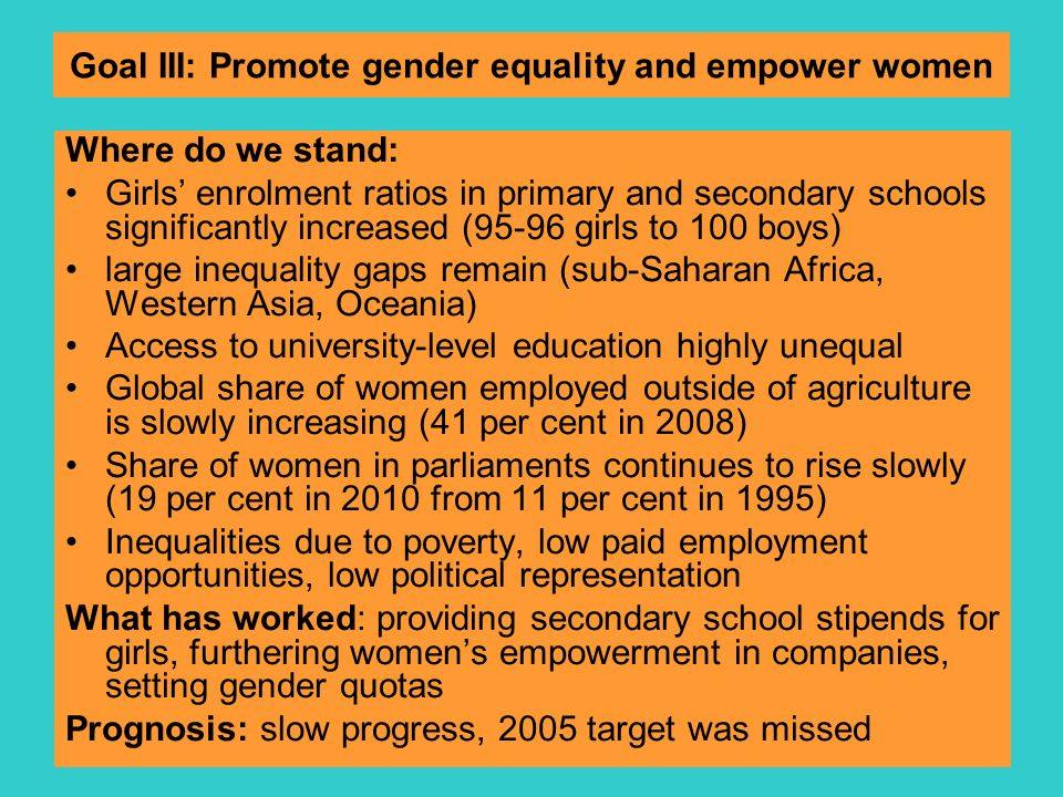 Goal III: Promote gender equality and empower women