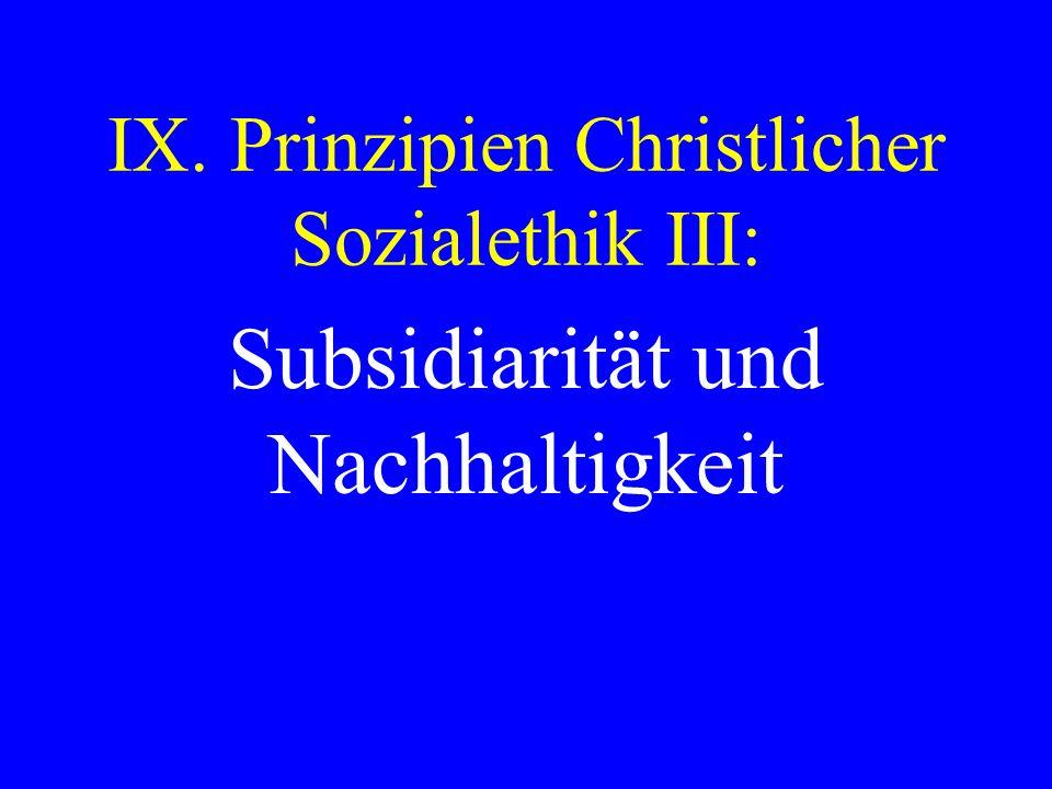 IX. Prinzipien Christlicher Sozialethik III:
