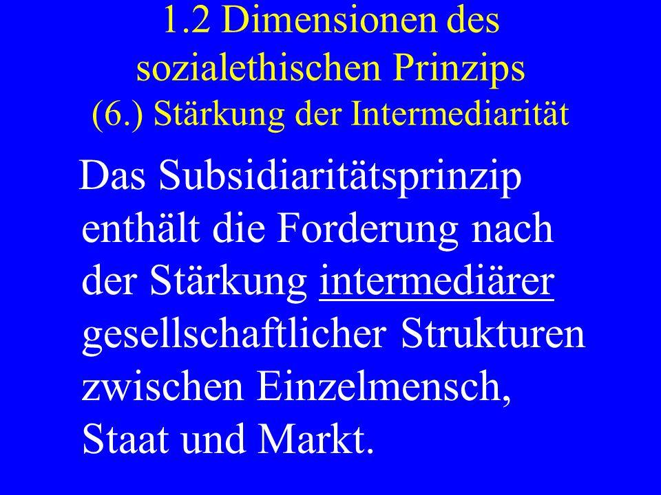 1. 2 Dimensionen des sozialethischen Prinzips (6