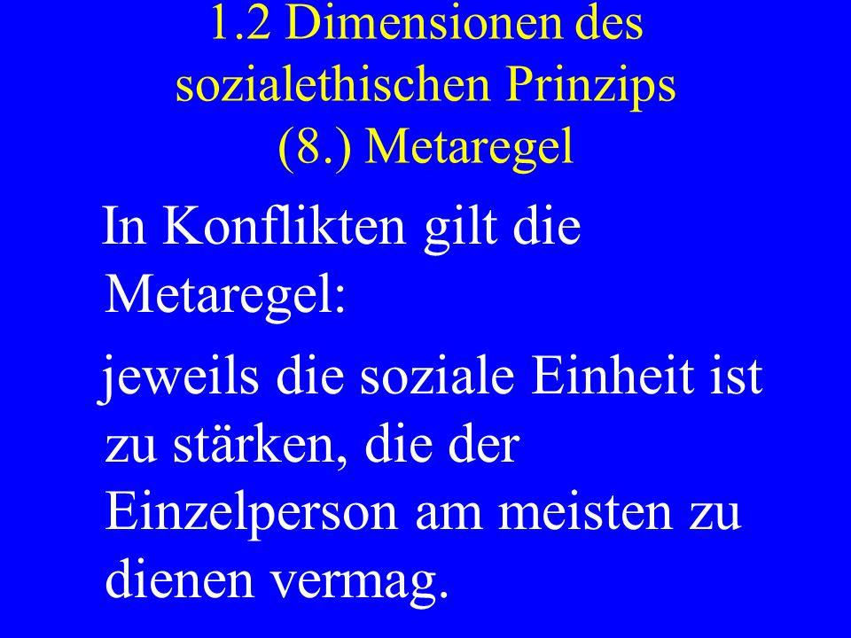1.2 Dimensionen des sozialethischen Prinzips (8.) Metaregel