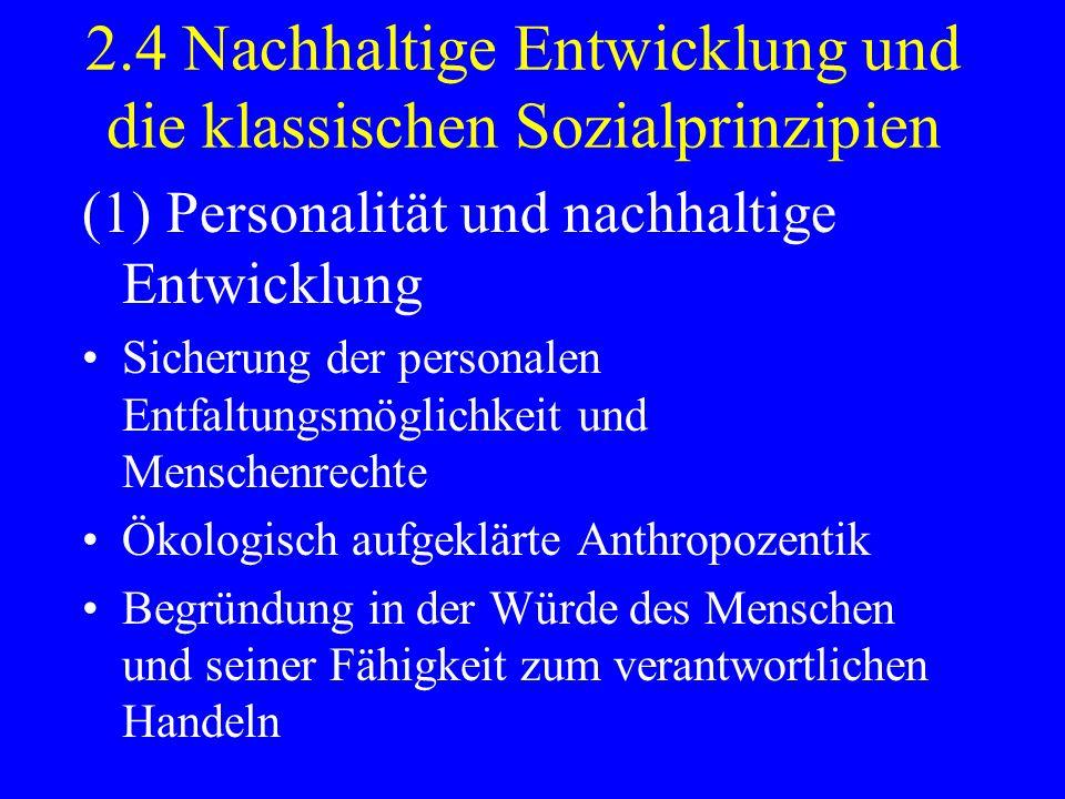 2.4 Nachhaltige Entwicklung und die klassischen Sozialprinzipien