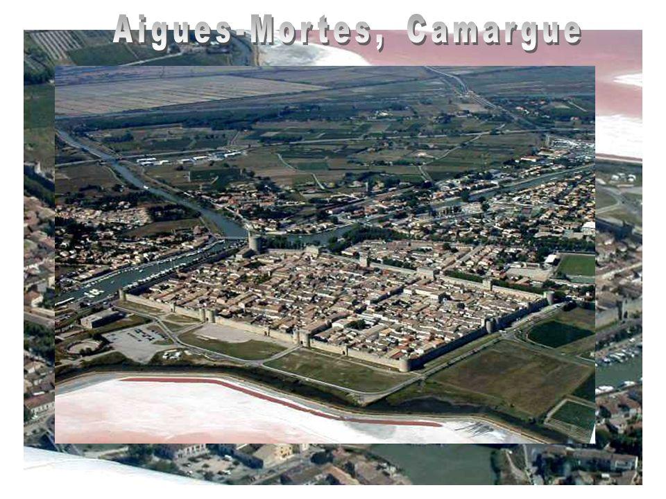 Aigues-Mortes, Camargue