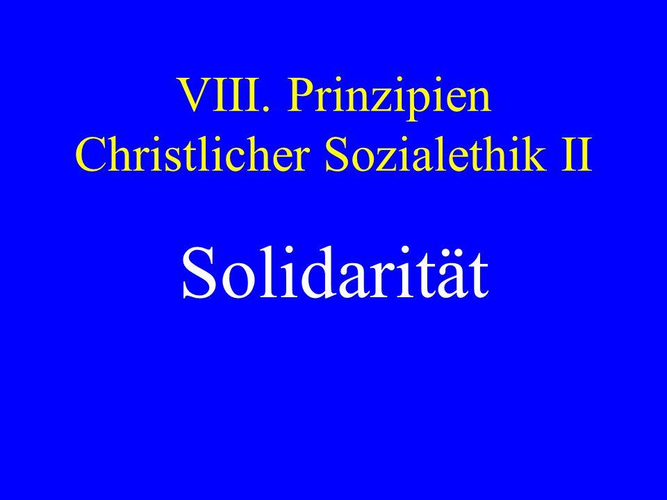 VIII. Prinzipien Christlicher Sozialethik II