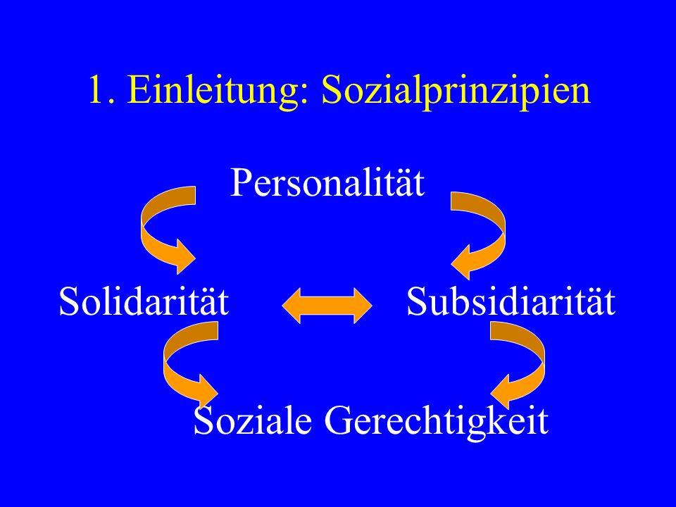 1. Einleitung: Sozialprinzipien