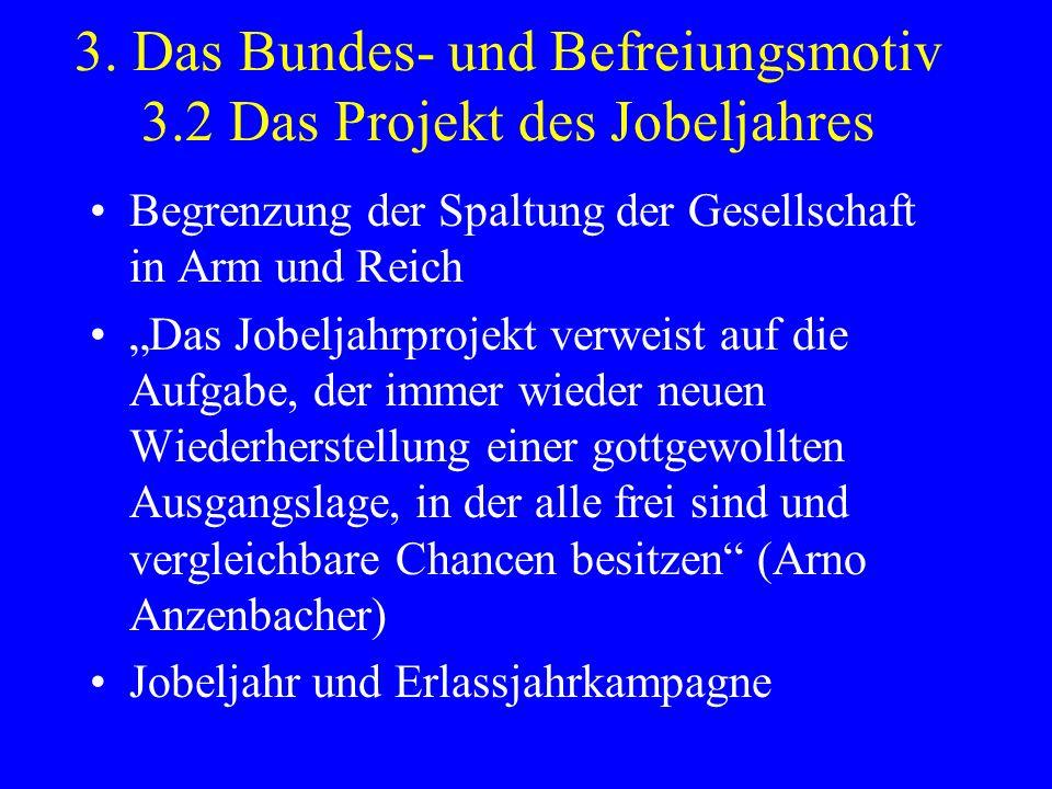 3. Das Bundes- und Befreiungsmotiv 3.2 Das Projekt des Jobeljahres