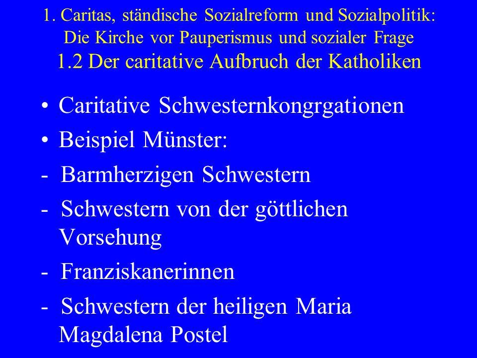 Caritative Schwesternkongrgationen Beispiel Münster: