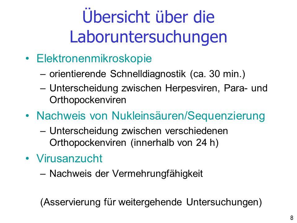 Übersicht über die Laboruntersuchungen
