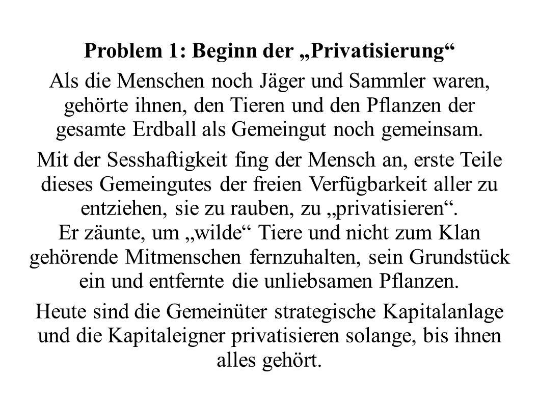 """Problem 1: Beginn der """"Privatisierung"""
