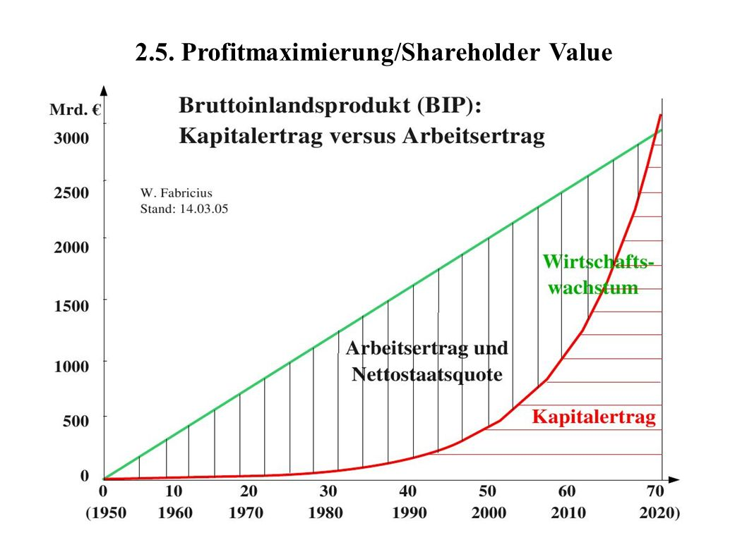2.5. Profitmaximierung/Shareholder Value