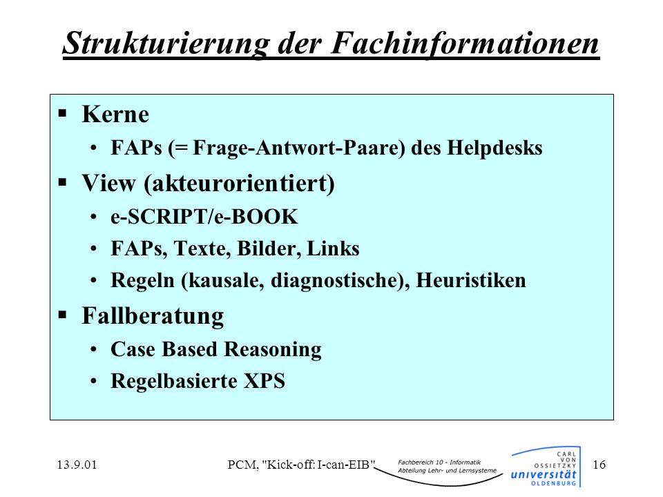Strukturierung der Fachinformationen
