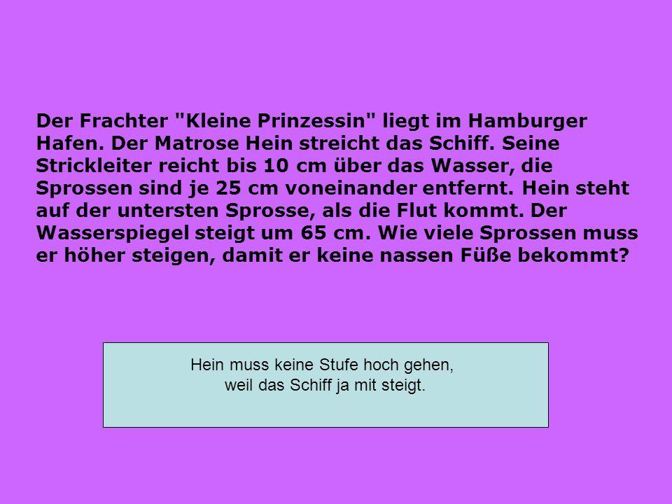 Der Frachter Kleine Prinzessin liegt im Hamburger Hafen