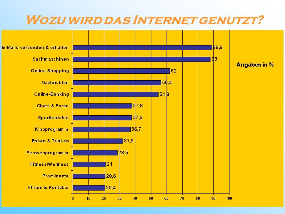 Wozu wird das Internet genutzt