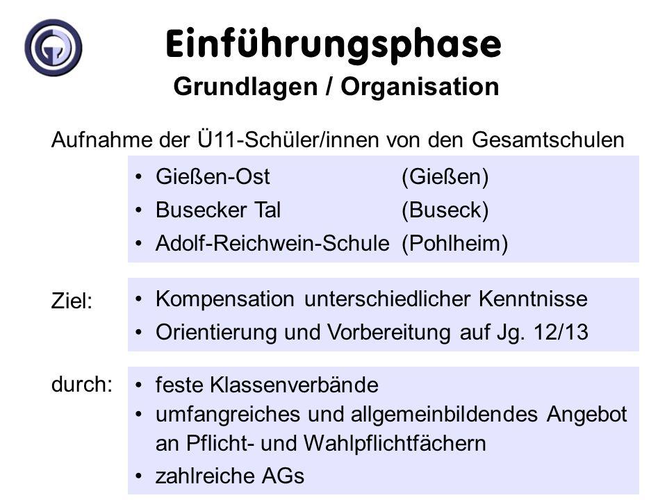 Organisation der Einführungsphase