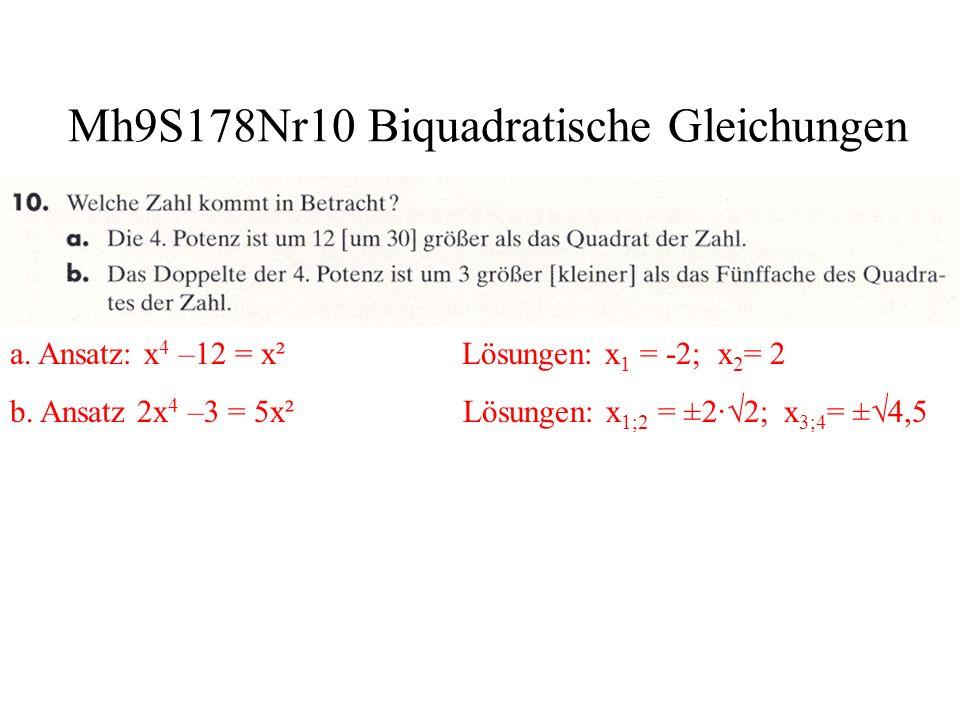 Mh9S178Nr10 Biquadratische Gleichungen