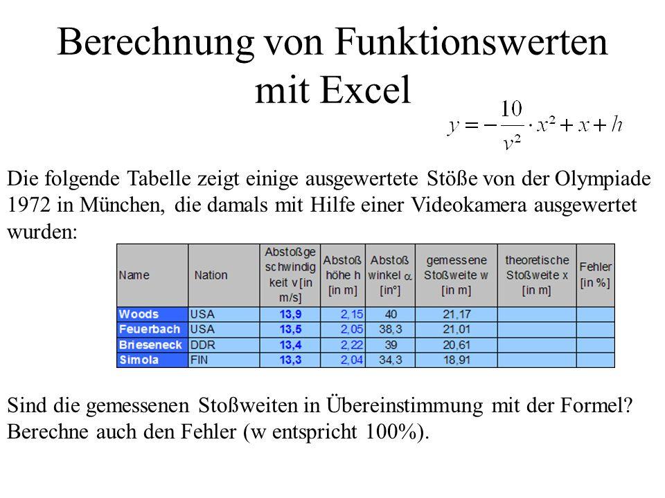Berechnung von Funktionswerten mit Excel