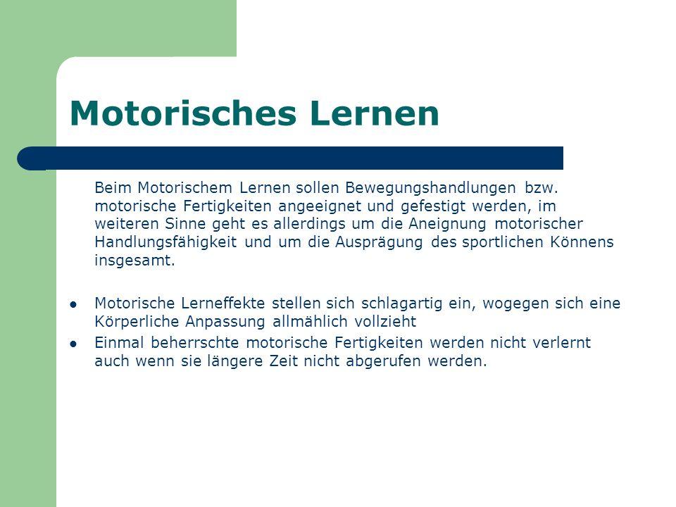Motorisches Lernen