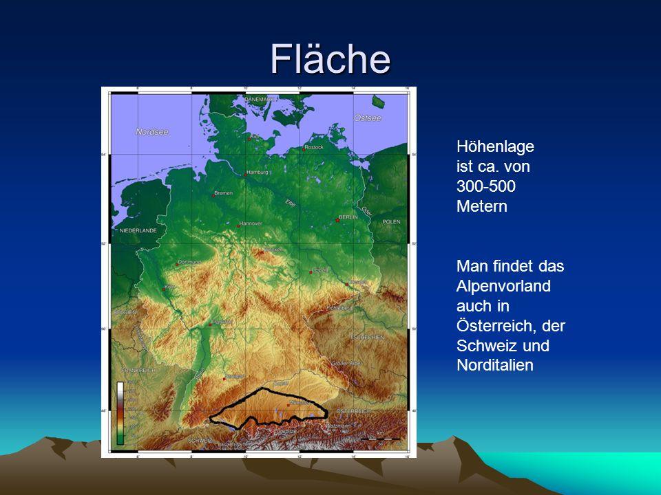 Fläche Höhenlage ist ca. von 300-500 Metern