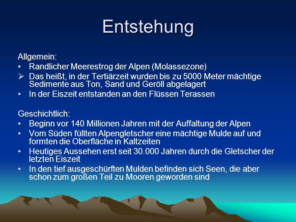 Entstehung Allgemein: Randlicher Meerestrog der Alpen (Molassezone)
