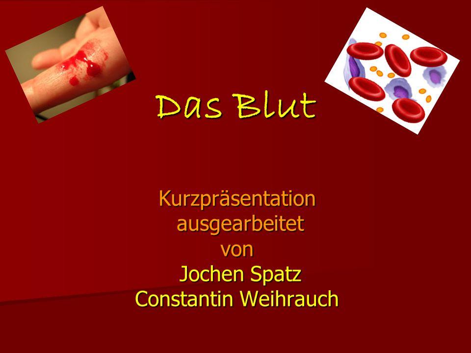 Kurzpräsentation ausgearbeitet von Jochen Spatz Constantin Weihrauch