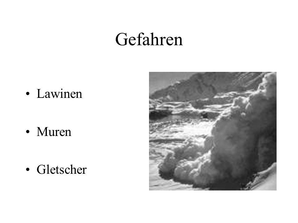 Gefahren Lawinen Muren Gletscher