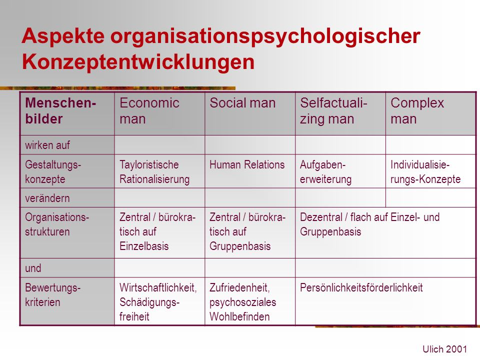 Aspekte organisationspsychologischer Konzeptentwicklungen