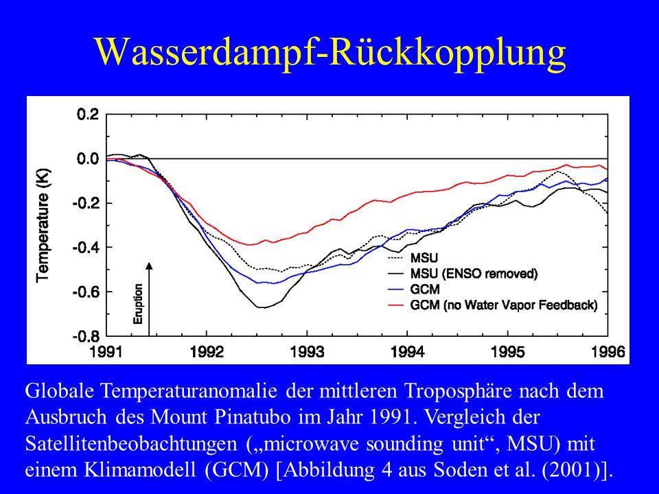 Wasserdampf-Rückkopplung