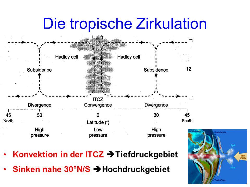 Die tropische Zirkulation