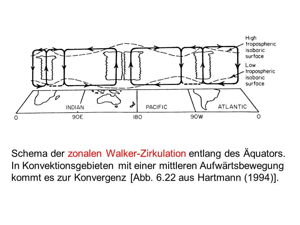 Schema der zonalen Walker-Zirkulation entlang des Äquators
