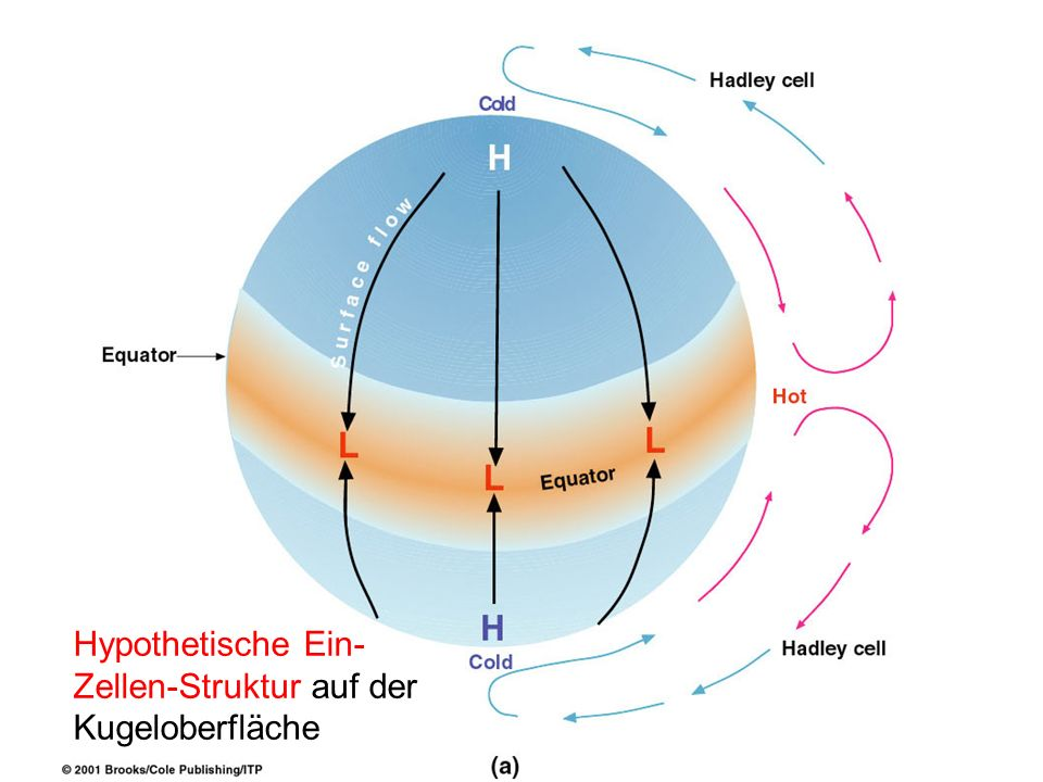 Hypothetische Ein-Zellen-Struktur auf der Kugeloberfläche