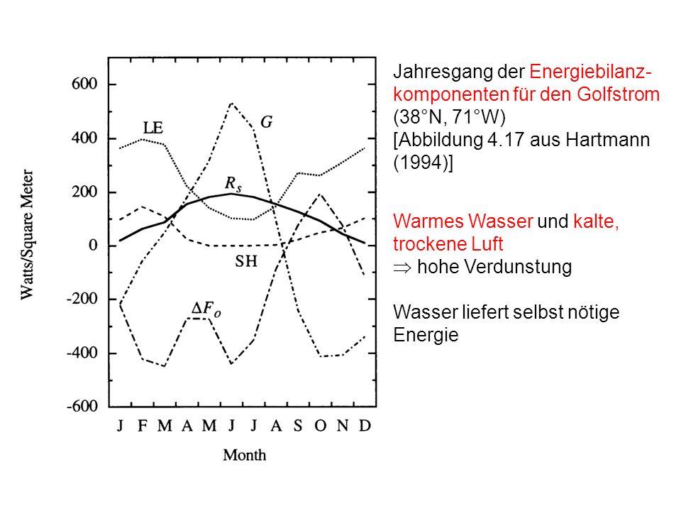 Jahresgang der Energiebilanz-komponenten für den Golfstrom (38°N, 71°W)