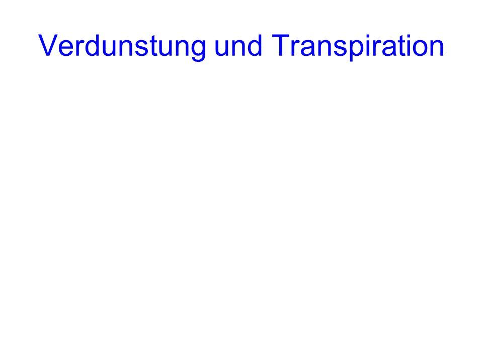 Verdunstung und Transpiration
