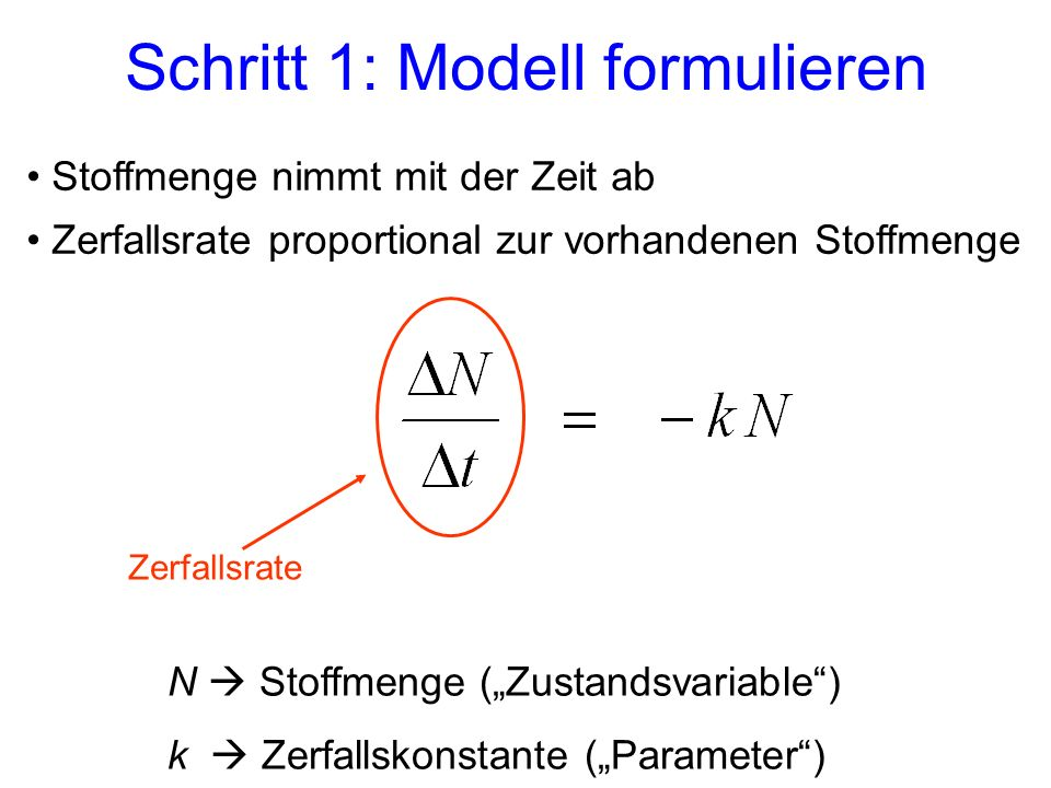 Schritt 1: Modell formulieren