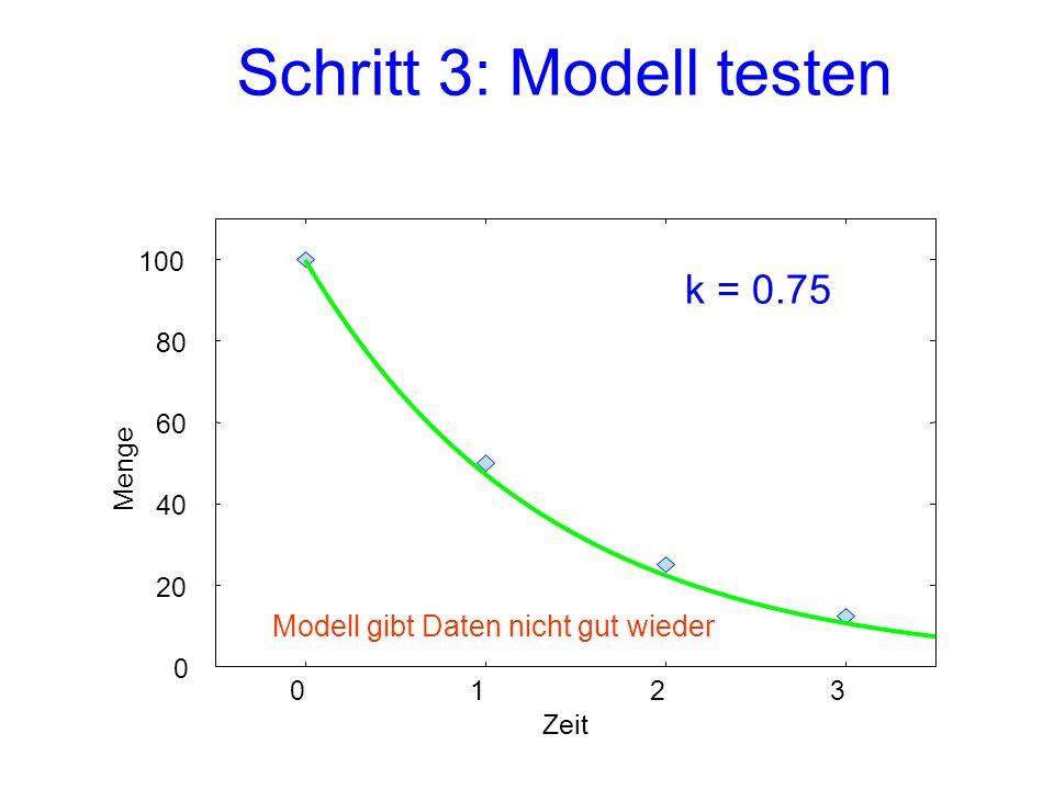 Schritt 3: Modell testen