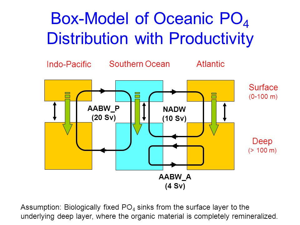 Box-Model of Oceanic PO4 Distribution with Productivity