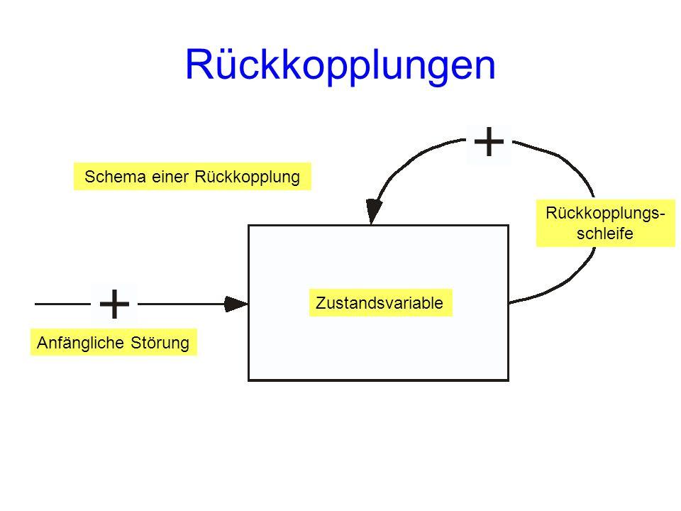 Rückkopplungen Schema einer Rückkopplung Rückkopplungs-schleife