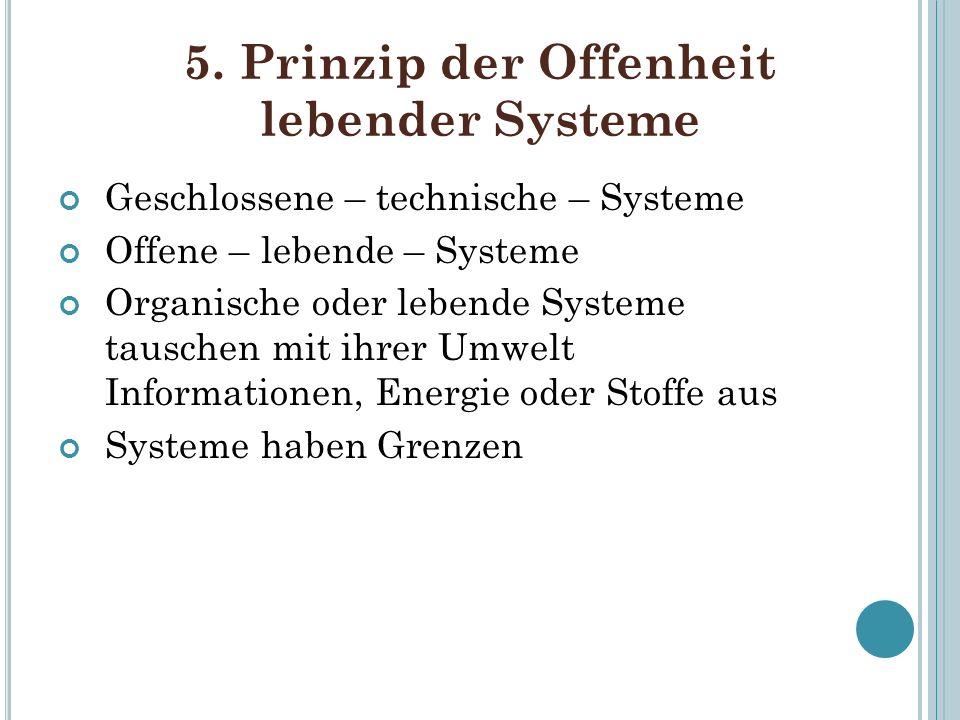 5. Prinzip der Offenheit lebender Systeme
