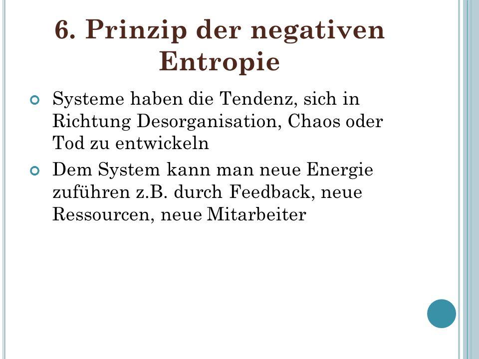 6. Prinzip der negativen Entropie