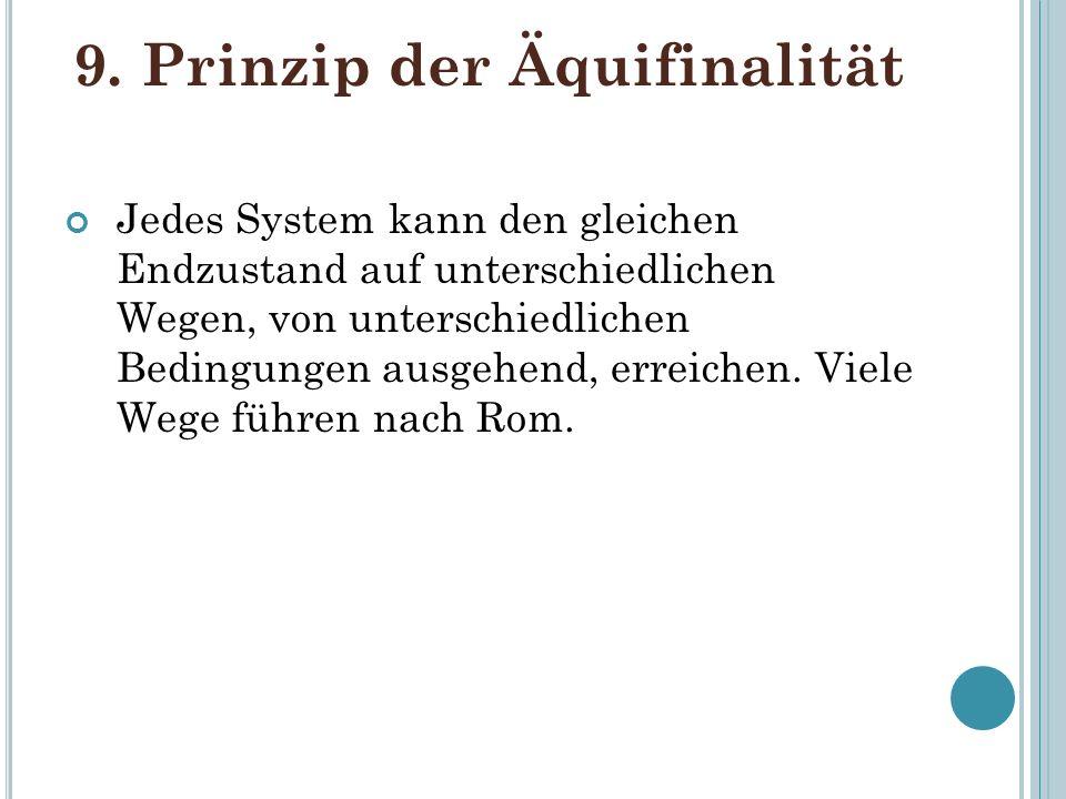 9. Prinzip der Äquifinalität