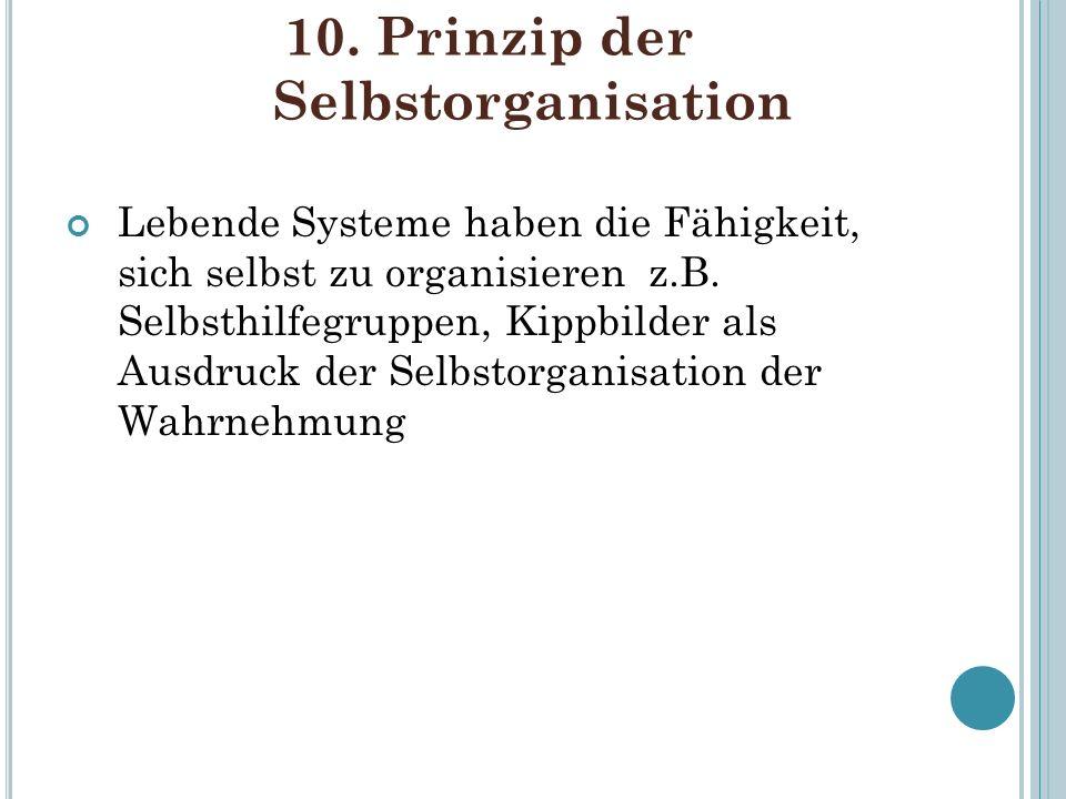 10. Prinzip der Selbstorganisation