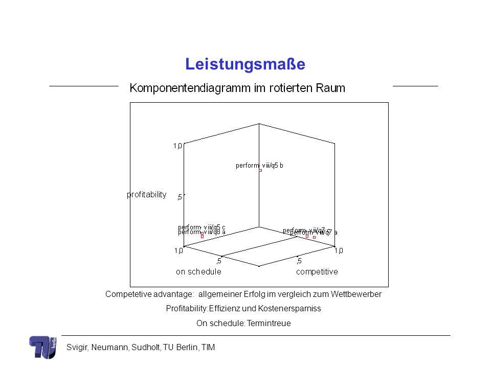 Leistungsmaße Competetive advantage: allgemeiner Erfolg im vergleich zum Wettbewerber. Profitability:Effizienz und Kostenersparniss.