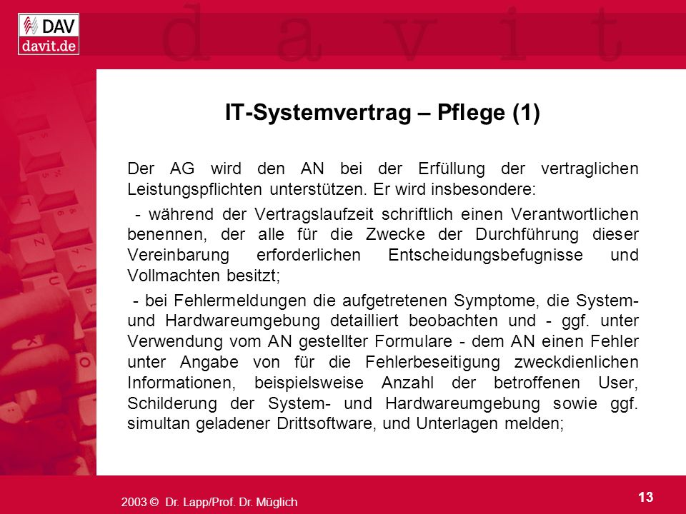 IT-Systemvertrag – Pflege (1)