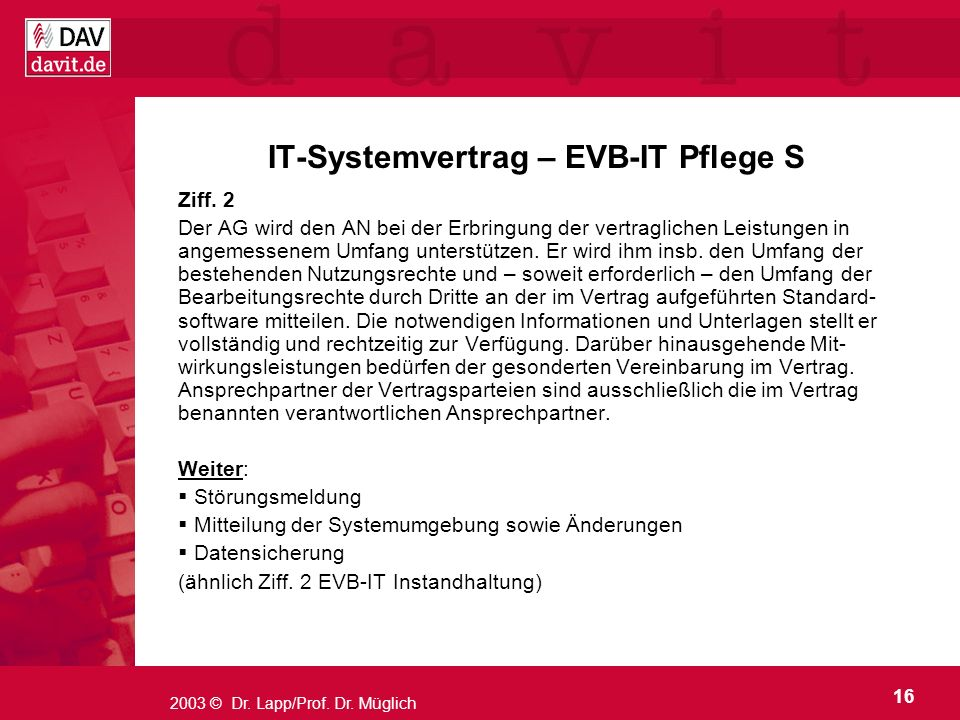 IT-Systemvertrag – EVB-IT Pflege S
