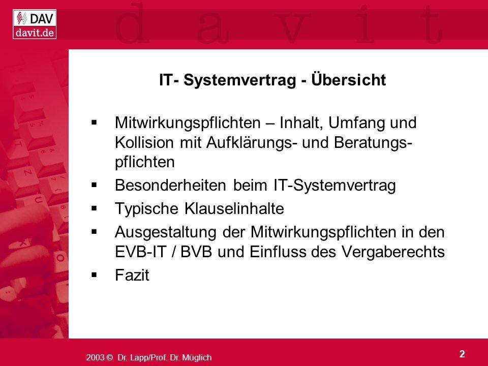 IT- Systemvertrag - Übersicht